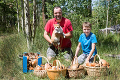 Father, son, cat + four baskets and one box full of aspen mushro. Oms in the woods Royalty Free Stock Image