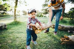 Father and son collect firewood in the forest for a fire. Father`s Day. A father with tattoos and a beard and his young son collect firewood in the forest for a royalty free stock photos