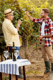 Father and son controlling grapes before harvest Royalty Free Stock Photos
