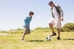 Father and son in the countryside Stock Photography