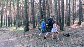 Father with son and daughter walking in forest stock footage