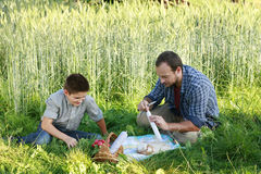 Father and son doing a picnic Stock Photography