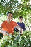 Father and son doing yard work. Stock Images