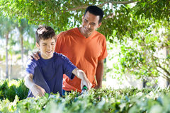 Father and son doing yard work together. Stock Photography