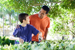 Father and son doing yard work together. Royalty Free Stock Image