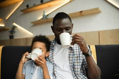 Father and son drinking tea. Young african american father and cute little son drinking tea in cafe Stock Image