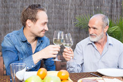 Father and son drinking wine Stock Photography