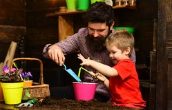 Father and son. Family day. Greenhouse. bearded man and little boy child love nature. happy gardeners with spring. Father and son. Family day. Greenhouse royalty free stock images