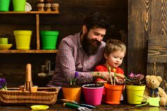 Father and son. Fathers day. Flower care. Soil fertilizers. happy gardeners with spring flowers. bearded man and little. Father and son. Fathers day. Flower care stock photography