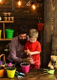 Father and son. Fathers day. Flower care watering. Soil fertilizers. happy gardeners with spring flowers. bearded man. Father and son. Fathers day. Flower care royalty free stock images