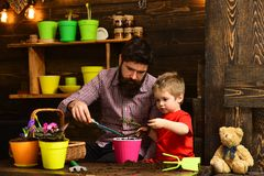 Father and son. Fathers day. Flower care watering. Soil fertilizers. happy gardeners with spring flowers. bearded man royalty free stock photos