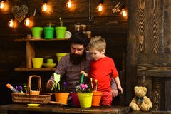 Father and son. Fathers day. happy gardeners with spring flowers. bearded man and little boy child love nature. Family. Father and son. Fathers day. happy stock images
