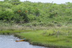 Father and son fishing in tropical savannah swamp Stock Photography