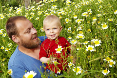 Father and son in flowers stock photo