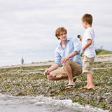 Father and son gathering rocks at beach Stock Photo
