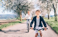 Father and son having fun when riding bicycles on country road under blossom trees. Healthy sporty lifestyle concept image stock photo