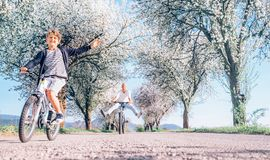 Father and son having fun when riding bicycles on country road under blossom trees. Healthy sporty lifestyle concept image. Father and son having fun spreading stock photography
