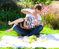 Father and son having a picnic Stock Photography