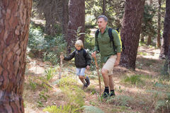 Father and son hiking in forest Royalty Free Stock Images