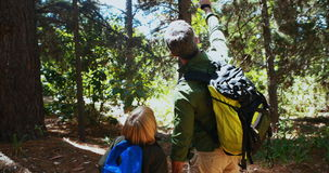 Father and son hiking with trekking poles. On a sunny day stock video