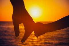 Father and Son Hold Hands Royalty Free Stock Image
