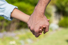 Father and son holding hands Royalty Free Stock Images