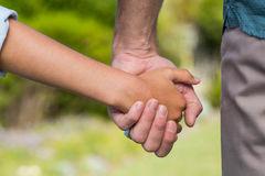 Father and son holding hands. In the countryside Stock Photography
