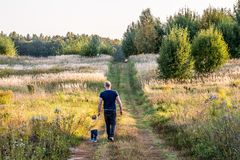 Father and son holding hands, walking together. Beautiful nature landscape around royalty free stock photos