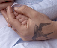 Father and Son. A father is holding his young baby's hand gently in his. There is a tenderness in the hold and the image is completed with the swallow tattoo Royalty Free Stock Photography