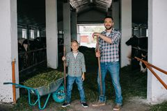 Father and son holding pitchforks and smiling at camera while working together. In stall stock images