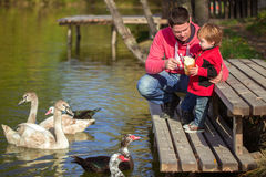 Father with son on the lake. Father with son on the shore of the lake Royalty Free Stock Photography