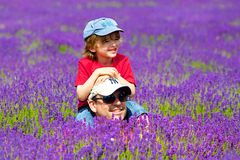A father and a son in Lavender farm in Banstead, Surrey, UK Royalty Free Stock Photo