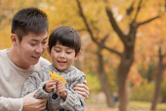 Father and son looking at leaf in the park in the autumn Stock Photography