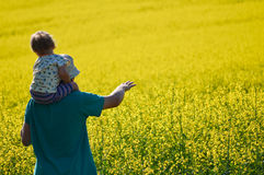 Father and son looking on rapeseed field on summer day. Father and little son looking on rapeseed field on summer day royalty free stock photos