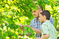 Father and son outdoor Stock Image