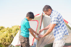 Father and son pitching their tent Stock Photography
