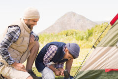 Father and son pitching their tent Royalty Free Stock Photos