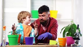 Father and son plant flowers together. Plants for home. Family hobby, upbringing. Education. Weekend at home. Flower in. A pot. Family business. Gardeners with stock video