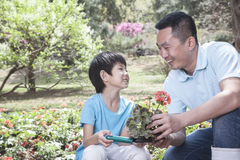 Father and son planting flowers. Stock Image