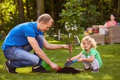 Father and son planting tree. Happy father and his little son planting a small tree royalty free stock image