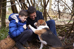Father and son playing with dog under a shelter of branches Royalty Free Stock Photos