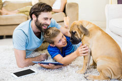 Father and son playing with a dog while using digital tablet. At home stock images