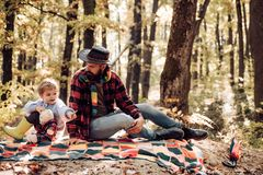Father and son playing in the forest. Dad and son in the autumn park play laughing. Father and son playing in the autumn. Forest royalty free stock images