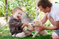 Father and son playing with a labrador puppy in the garden Royalty Free Stock Photo