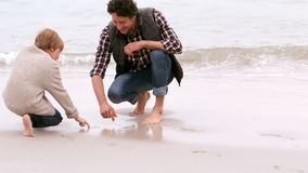 Father and son playing. At the sea stock footage