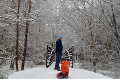 Father and son playing in the snow Royalty Free Stock Image