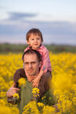 Father with son in a rape field on sunset Stock Photography