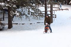 Father and son riding a sledge Stock Photography