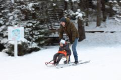 Father and son riding a sledge in motion Royalty Free Stock Images