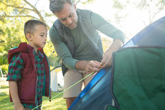 Father and son setting up the tent at campsite. On a sunny day stock photo